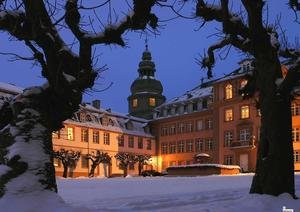 Schloss Winter