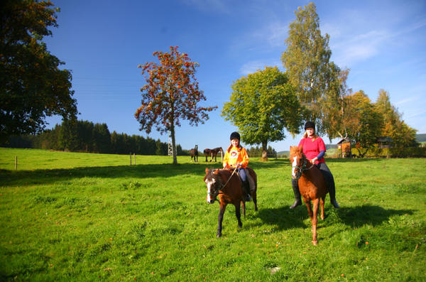 Reiten in Bad Berleburg
